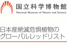 日本産絶滅危惧植物のグローバルレッドリスト